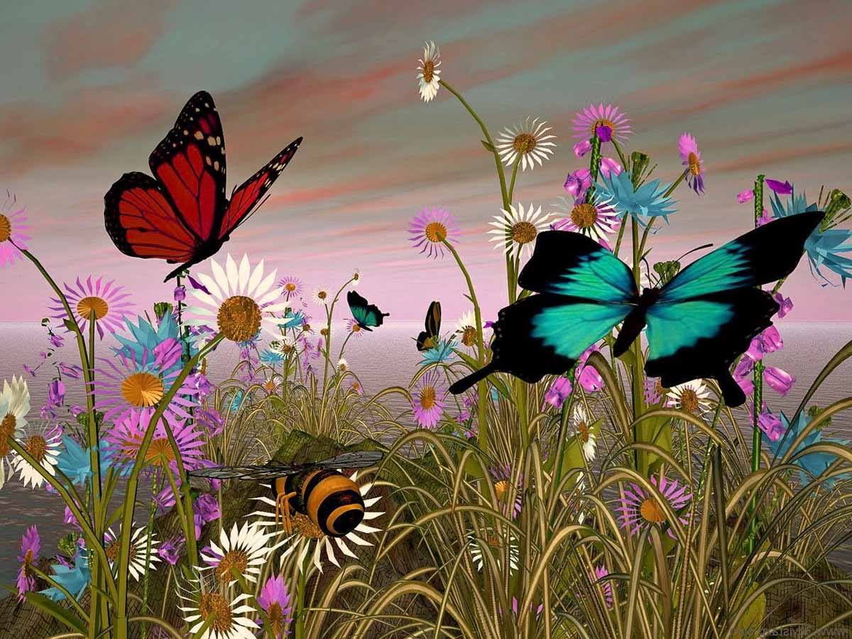 Attirare farfalle in giardino for Sfondi farfalle gratis