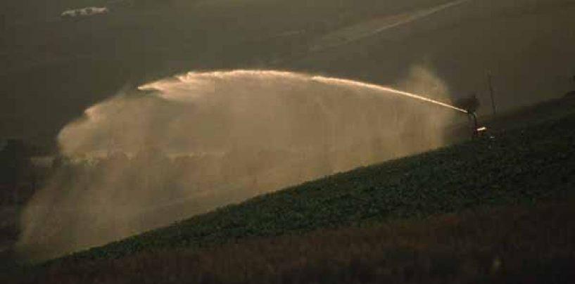 Progettazione impianto di irrigazione