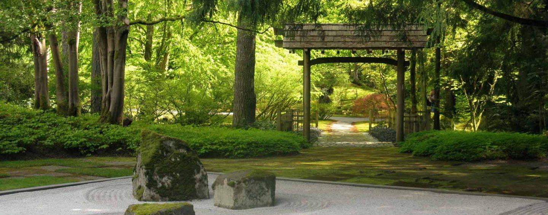 Giardino Zen Regole : Piante per giardino zen coltivare facile
