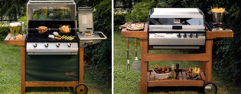 I migliori barbecue da giardino coltivare facile - Migliori alberi da giardino ...