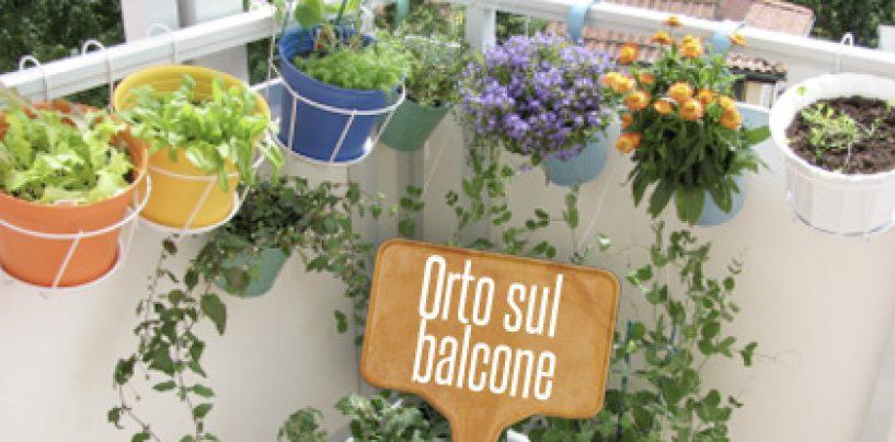 Fare un orto sul balcone
