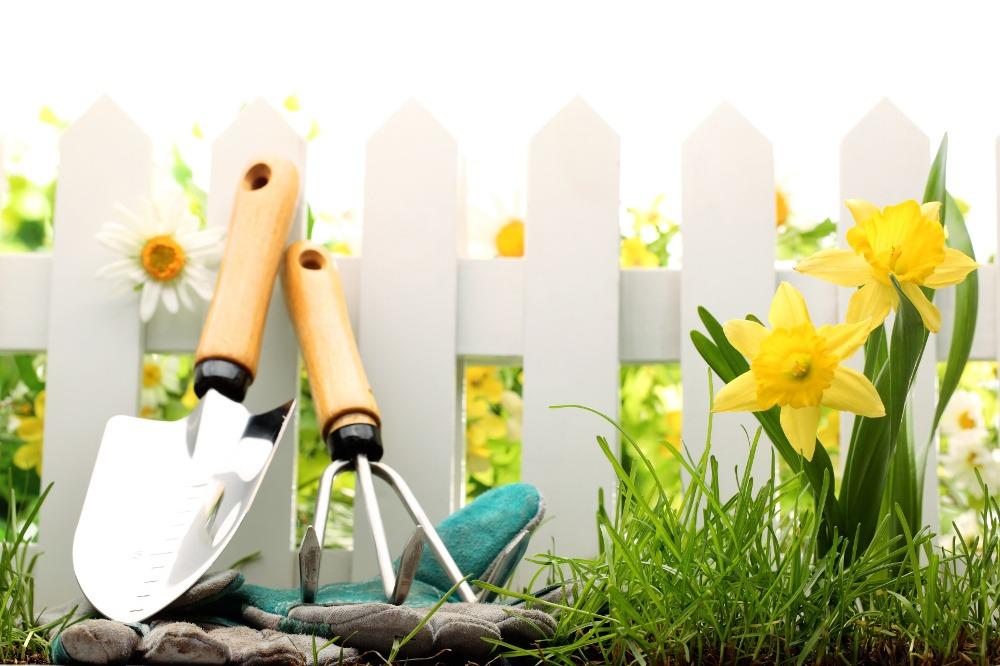 Coltivare facile guida orto e giardino - Guida giardinaggio ...