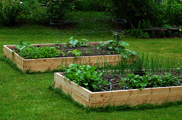 Come realizzare un orto - L orto in giardino ...