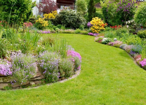 la cura del giardino