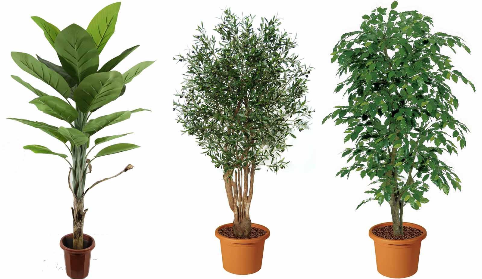 Piante artificiali guida a come usarle in giardino - Porta piante da esterno ...