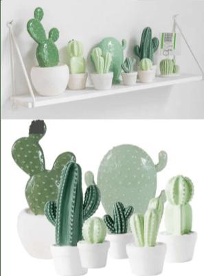 Ceramica da bagno con piante grasse