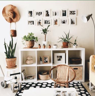 Ingresso di casa decorato con le piante grasse