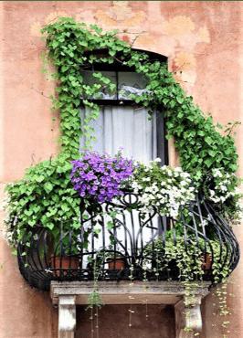 Balcone bellissimo con edera e fiori
