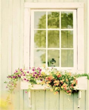 Finestra con vaso di legno e fiori colorati