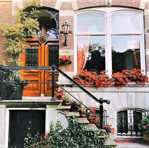 casa pargina di città con fiori