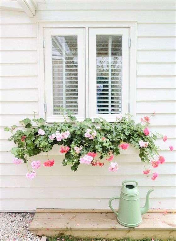 grazioso gruppo di fiori su finestra bianca